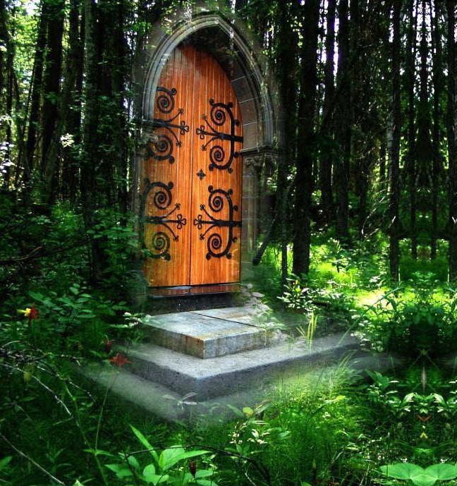 door portal