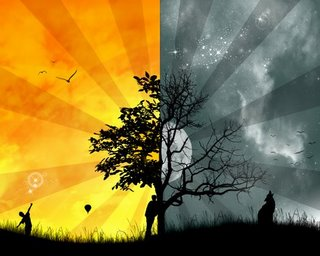 Dualiteit.. Waar focus je je op. Zie je een beschadigde boom, of focus je op de verlichte kant..? Of neem je genoegen met een 'halve boom'..