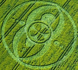 Op 19 april 2009 ontdekt in Avebury, Wiltshire