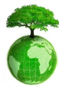 groene bol met boom
