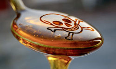 high fructose corn syrup spoon skull