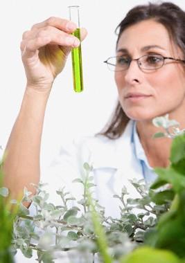 De reguliere wetenschap dient zich steeds meer af te vragen of haar manier van onderzoeken niet ter discussie staat, in plaats van de geneeskunst die Homeopathie is!