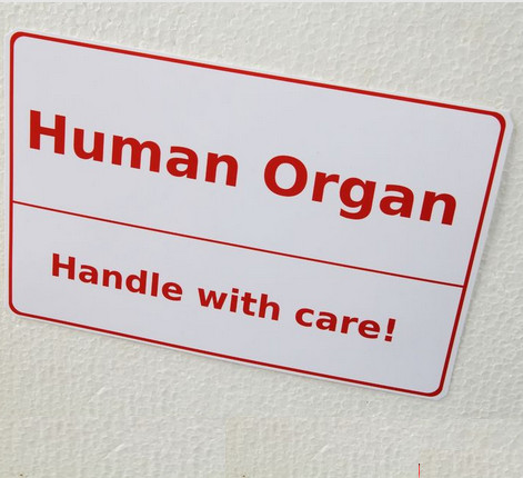 human-organ-take-care
