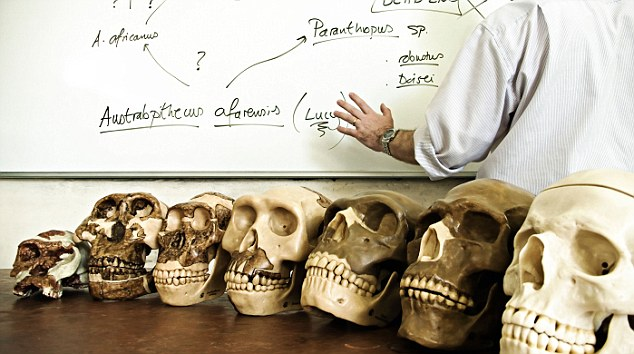 AJJT0N Human evolution