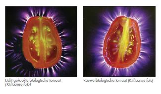 Kirlianfoto van tomaten; rechts een verse tomaat en links een tomaat die al een aantal dagen ouder is. (klik voor artikel hier op de site)