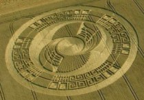 De indrukwekkende Maya-kalender graancirkel