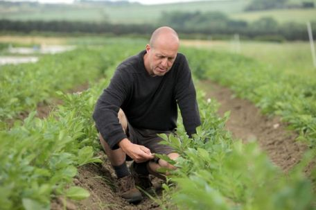Prof. Carlo Leifert (Professor of Ecological Farming) at Newcastle University's Nafferton Ecological Farm in Northumberland