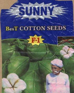 Het Monsanto Bt-cotton zaad, het 'Witte Goud' blijkt puur vergif te zijn voor de landbouw-infrastructuur in India