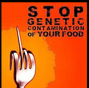 stop conteminating our food