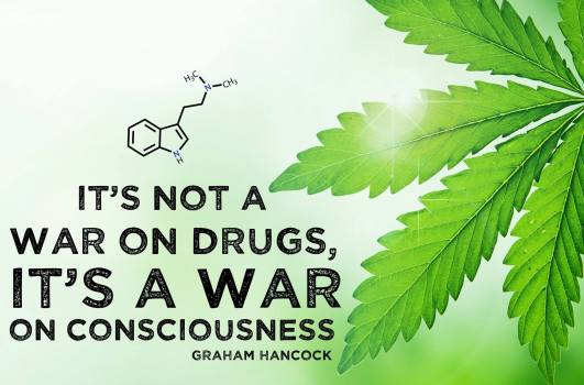 weed consciousness