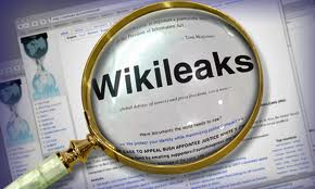 wikileaks loupe