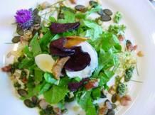 wild-salade-salvestrolen