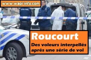 Roucourt : des voleurs interpellés après une série de vols