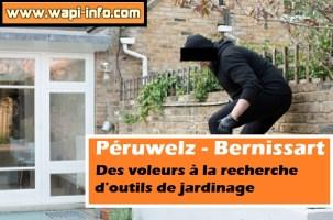 Péruwelz - Bernissart : des voleurs à la recherche d'outils de jardinage
