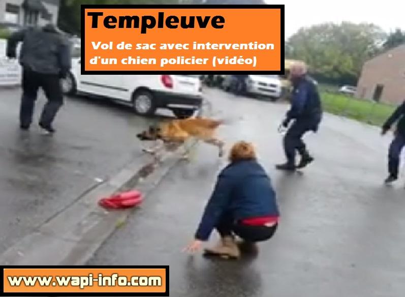 Templeuve vol sac chien policier