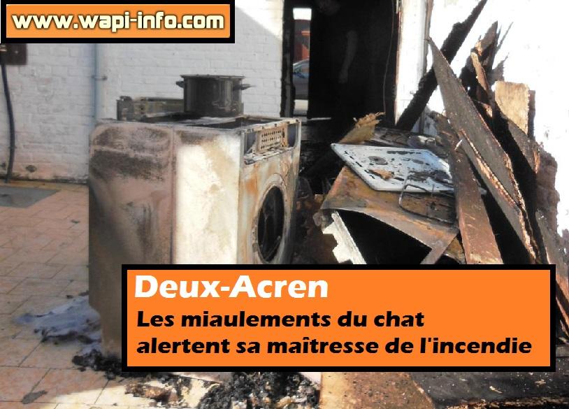 incendie deux acren chat