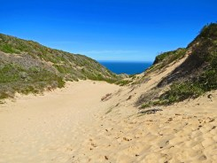 Robberg Nature Reserve - Witsand