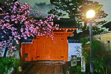 Kyoto's bezienswaardigheden: een avondwandeling door de Gion wijk