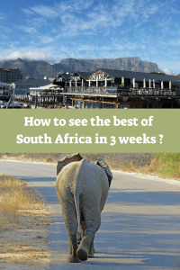 South Africa itinerary 3 weeks