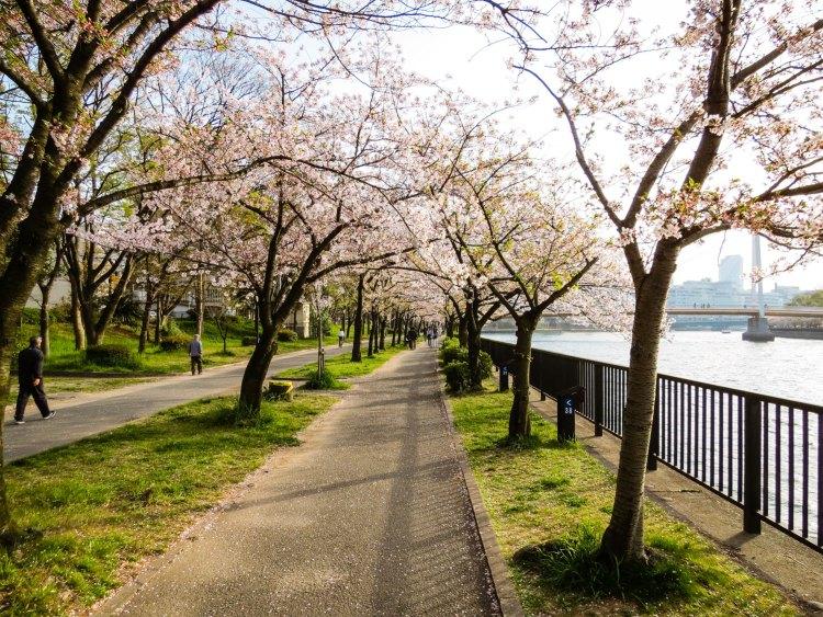 Kema Sakuranomiya Park, Osaka, Japan