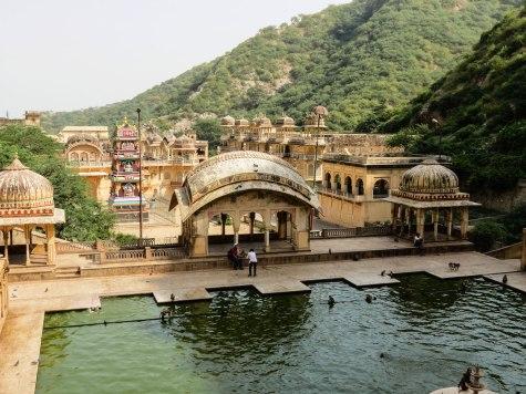 Monkey Temple Jaipur, India