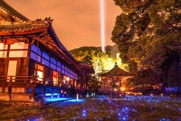 Shoren-in temple night illumination Kyoto, Japan-