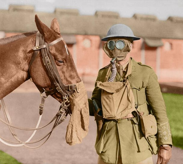 2-soldier-horse-gas-masks-canadian-army-veterinary-corps-ww1-colour