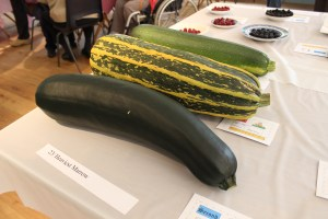 Heaviest marrow contest