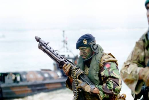Portuguese Marines, Trident Juncture 2015 Multinational NATO Exercise by Jason Johnston (DVIDS, released)