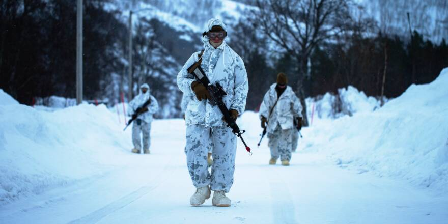 US Marine Corps, Charlie Company, 2nd Law Enforcement Battalion, II Marine Expeditionary Force Information Group, foot patrol, Norway