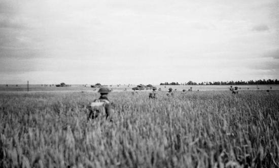 infanterie-ecossaise-champs