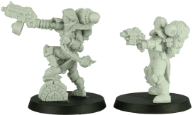 Shieldwolf Miniatures - Sisters of Talliareum 4