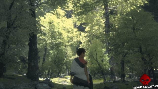 Test The Last Guardian l'enfant en forêt