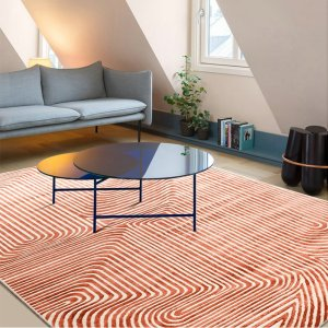 Red Striped Rugs for Living Room