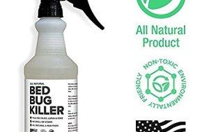 Best Bed Bug Sprays Reviews