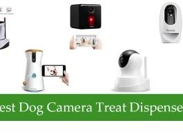 Best Dog Camera Treat Dispenser Review
