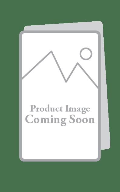 Christmas Bulletin Jesus Our Savior Is Born Warner Press