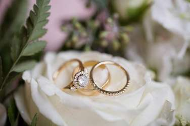 Classic gold wedding rings on white rose