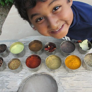 Indian Masala (Spices)| www.warriorinthekitchen.com