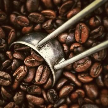 Kofeina jest królem suplementów do treningu przed treningiem