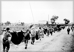 """This image, captured from the Japanese, shows American prisoners using improvised litters to carry those of their comrades who, from the lack of food or water on the march from Bataan, fell along the roadsides."""" Philippines, April 1942. NARA photo."""