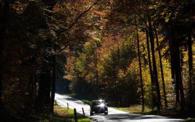 Herbstanfang – der Sommer klingt aus