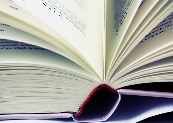 Die lesende Minderheit | Buchblog | waseigenes.com