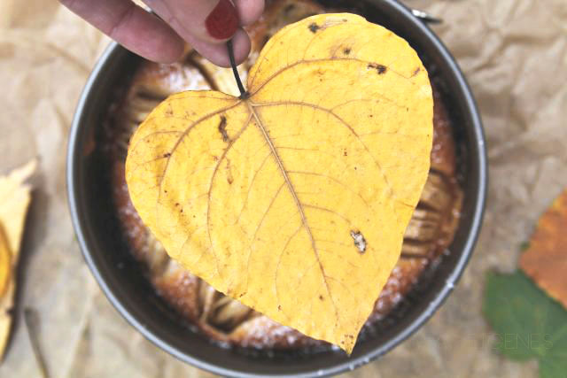 Rezept: Geritzter Apfelkuchen | was eigenes Blog