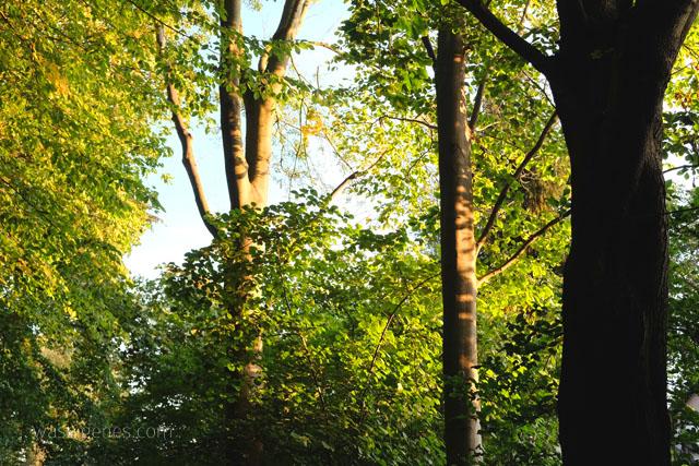 Herbst 2015 | Herbstliebe | waseigenes.com