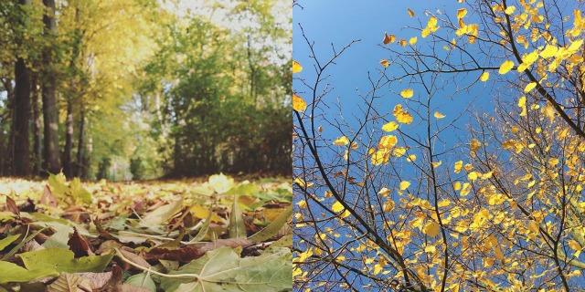 monatsrueckblick-oktober-2015-instagram-was-eigenes-blog-8