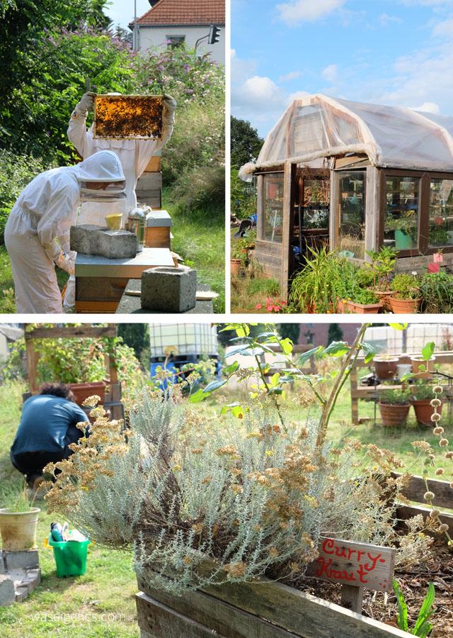 Regionalitaet-Nachhaltigkeit-waseigenes.com-NeuLand-urban-gardening-Koeln