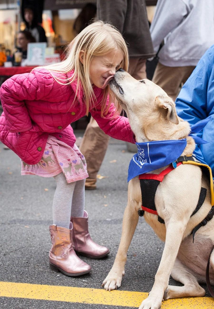 Pet rescues in Washington, DC. Photograph by Hannele Lahti.