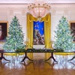 Photos White House Holiday Party Attendees Show Off Mostly Maskless Selfies