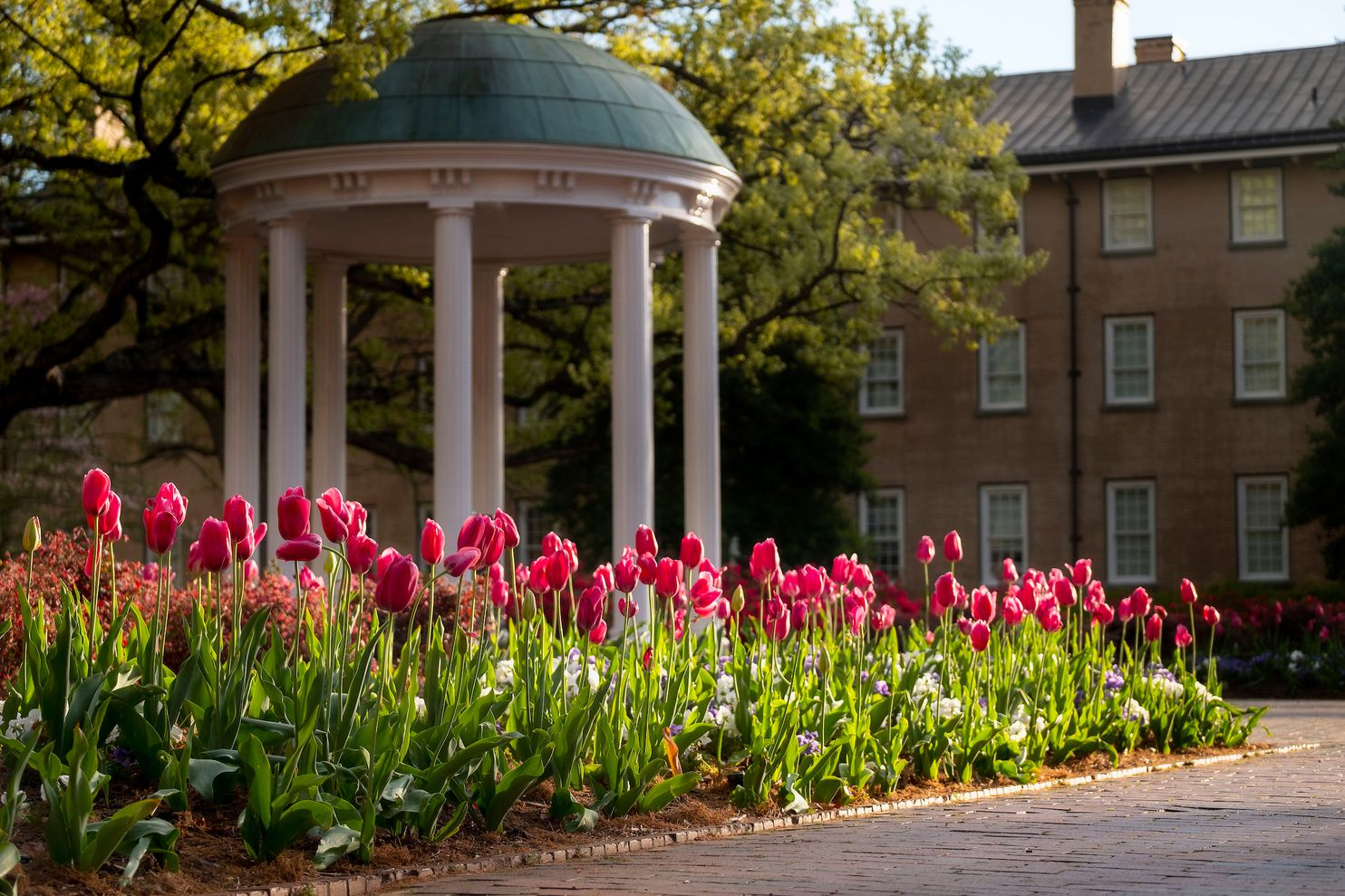 University Of North Carolina Defends Race Conscious Admissions In Federal Lawsuit